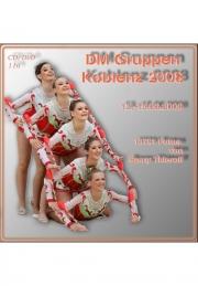 Gruppen Koblenz 2008