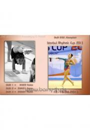 252 Istanbul Rhythmic Cup_2013