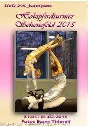295_ Holzpferdturnier Schenefeld 2015